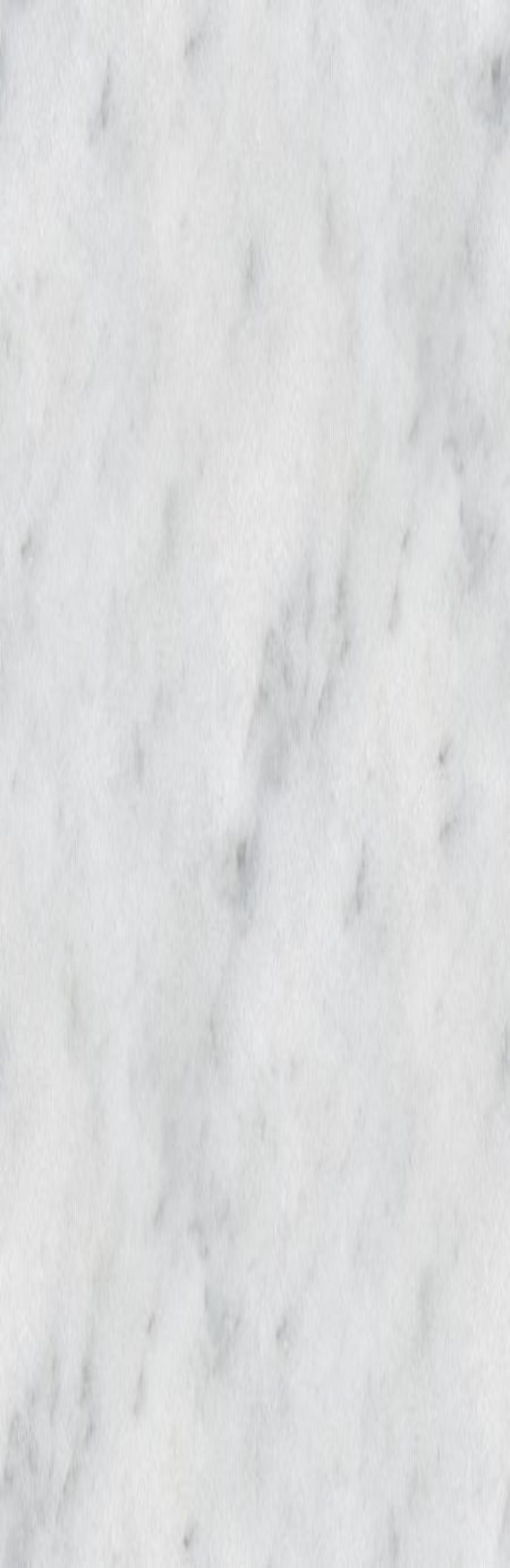 Seamless White Marble : Wolves
